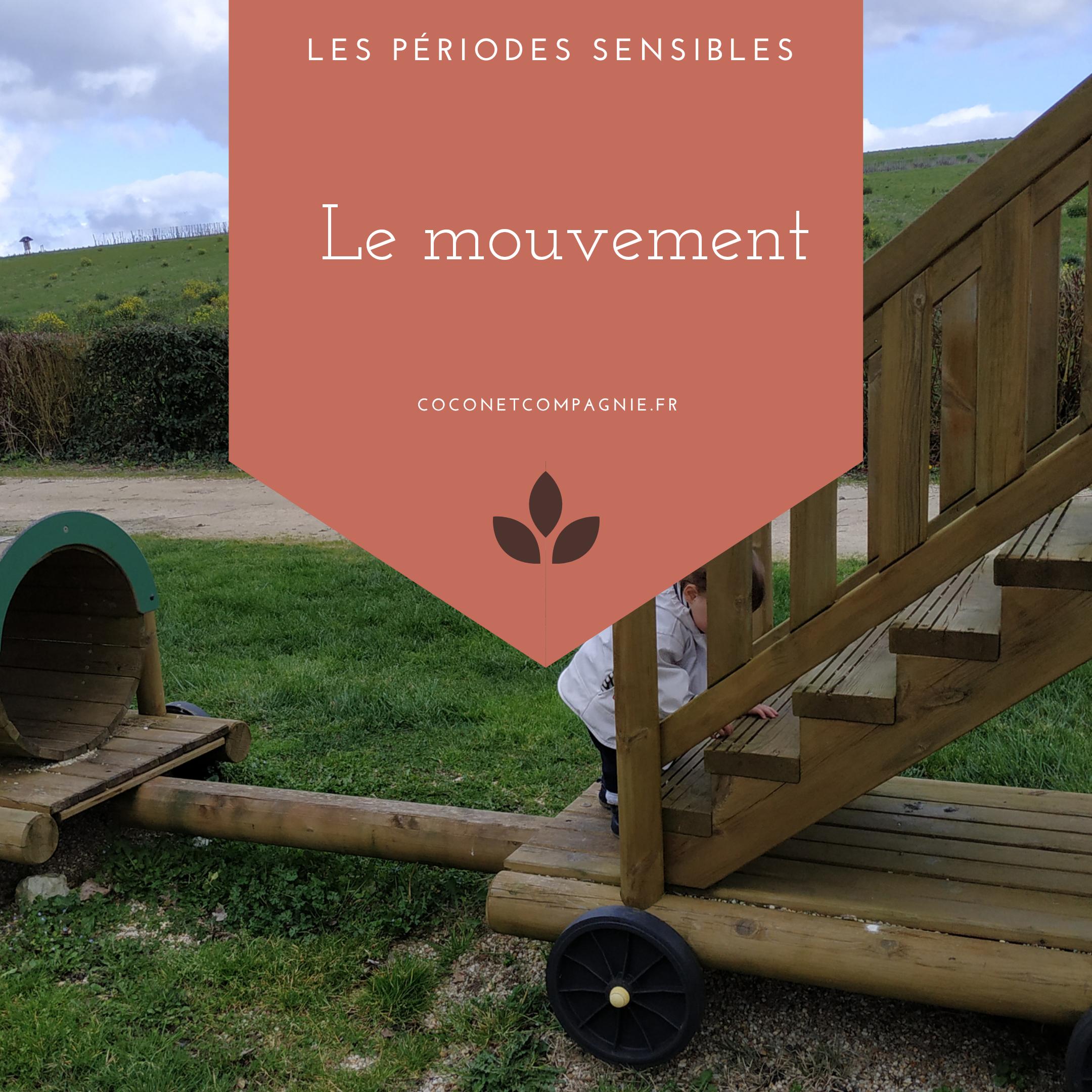 periode_sensible_mouvement_cocon_compagnie
